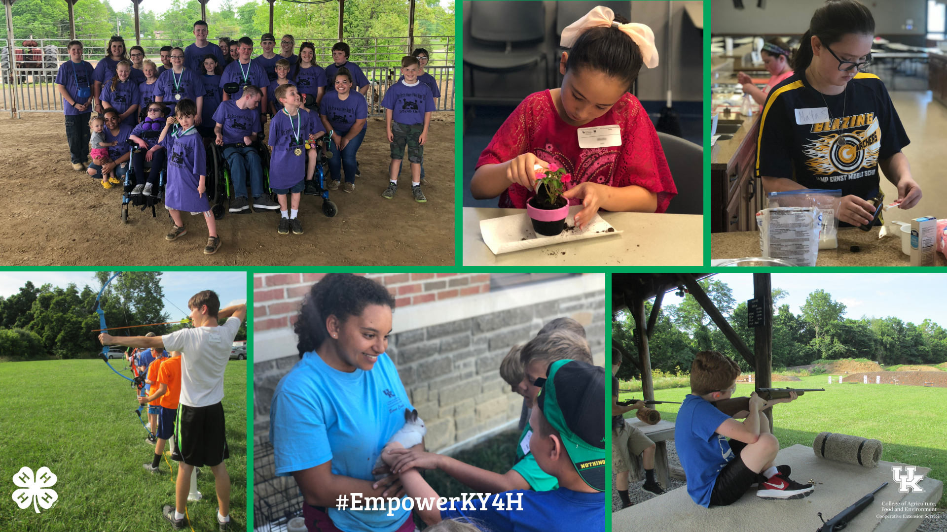 4-H collage