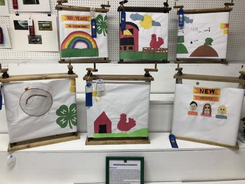 Boone County Fair 4-H summer project awards